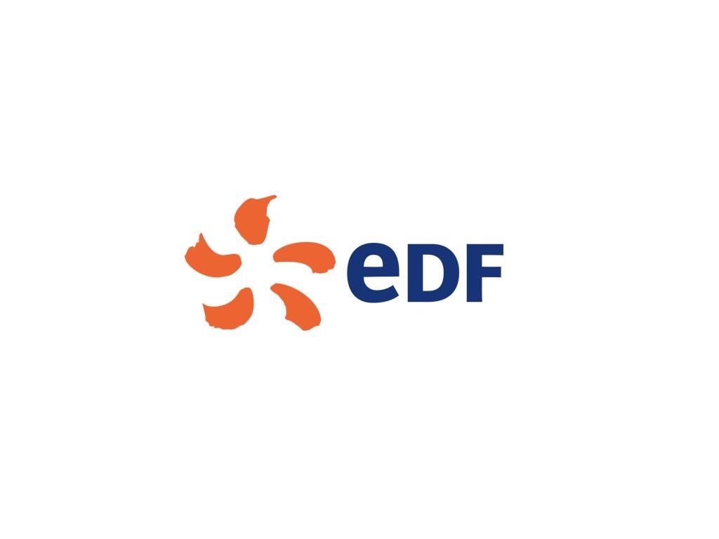 Magicien EDF